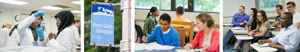 majors and programs at abington