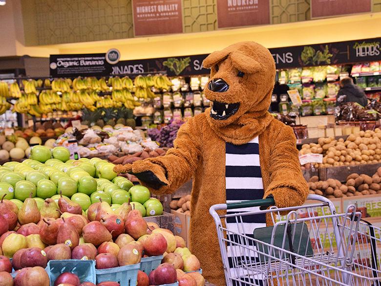 lion shopping