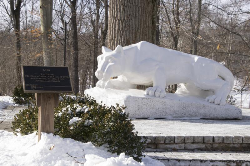 Lions Shring