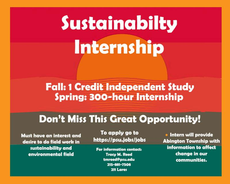 Sustainability Internship